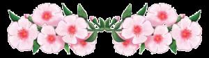 Cornicetta-fiori-di-pesco