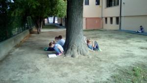 Che_bello_leggere_sotto_il_nostro_grande_albero![1]